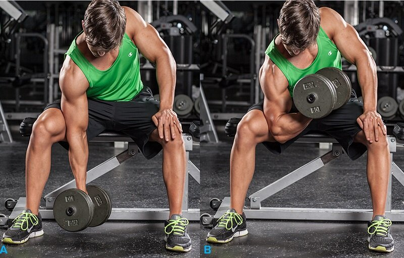 How to carry out concentrated lifting for biceps