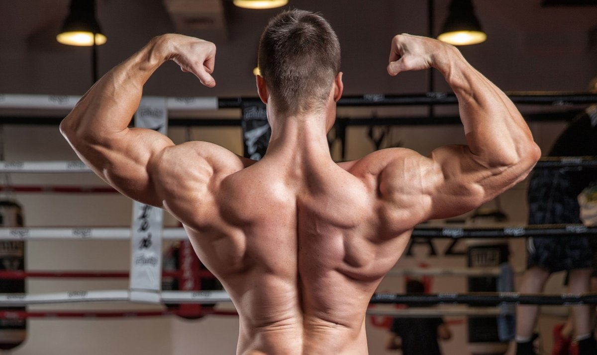 Is it possible to pump back muscles at home?