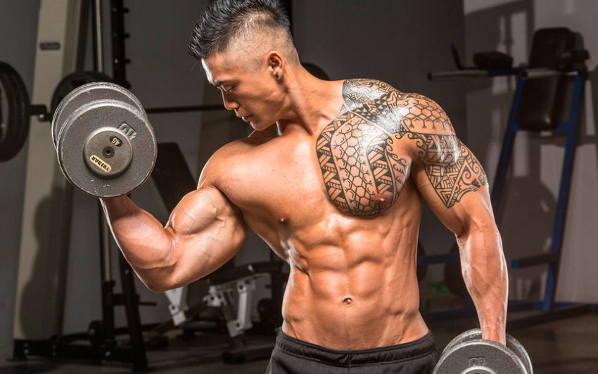 Proper pumping of arm muscles at home or in the gym