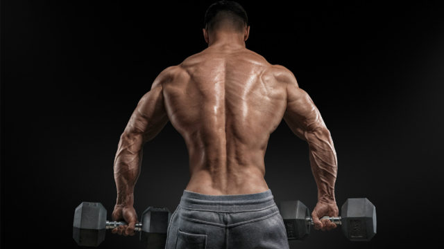 pump back muscles at home