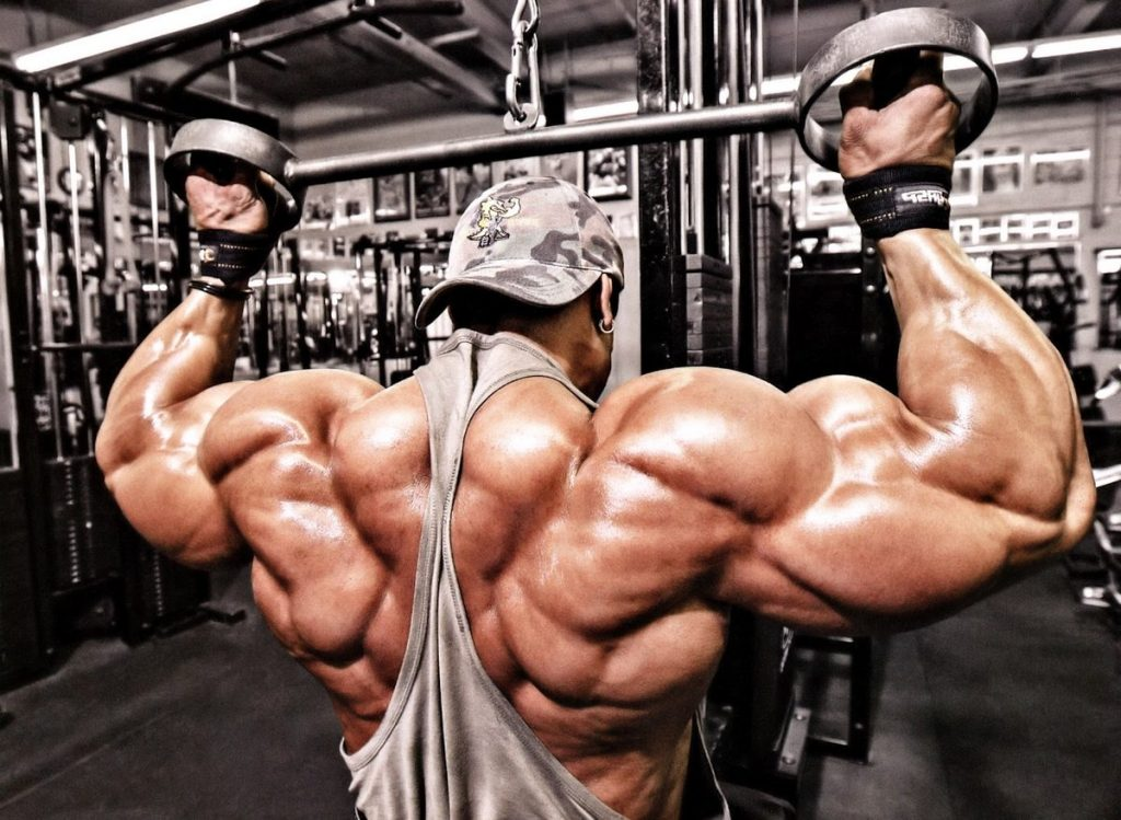 pump the muscle group of the back